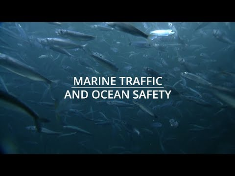 Marine Traffic and Ocean Safety