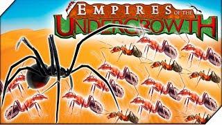 ПАУКИ УБИЙЦЫ и МУРАВЬИ ВОРЫ - Игра Empires of the Undergrowth прохождение ( 2СЕРИЯ )