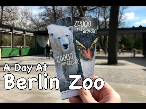 A Day At Berlin Zoo - March 2017