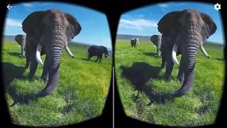 Jak spustit video ve virtuálních brýlích?