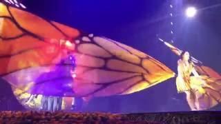 """""""Así Es La Vida"""" Cirque du Soleil's """"Luzia"""" Live Toronto 08.26.16"""