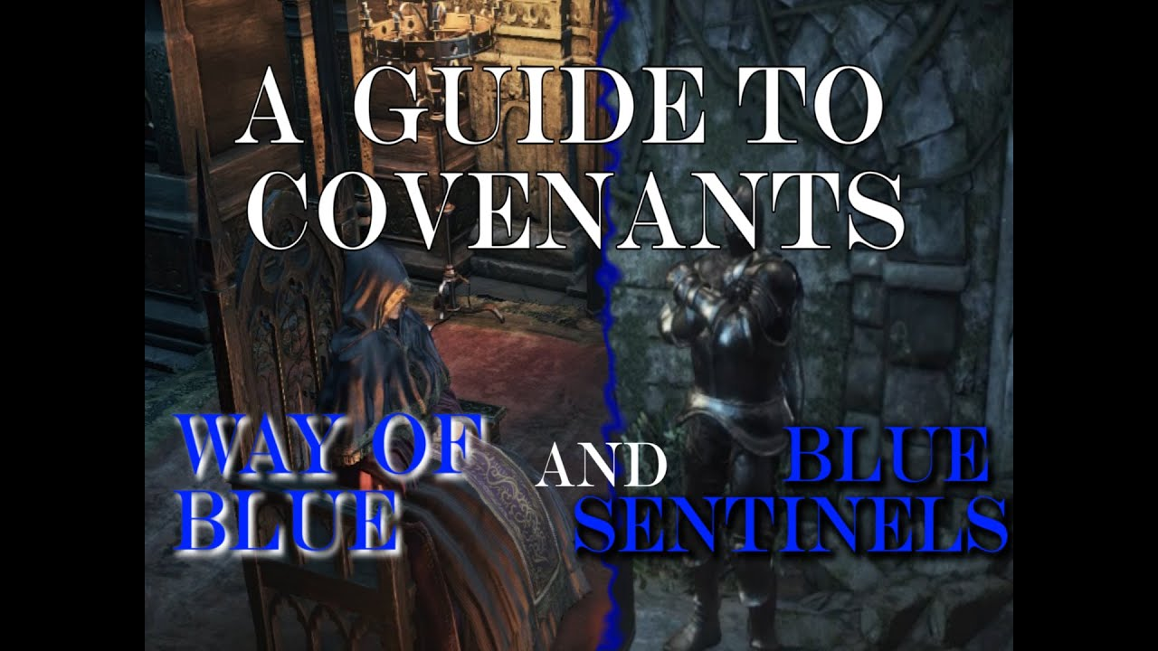Blue sentinel matchmaking dark souls 3