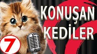 Konuşan Kediler Ve Köpekler 7 - En Komik Videolar