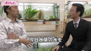 【今回の社長】株式会社LPH 山本社長 アイドルを目指し日夜頑張っていた...