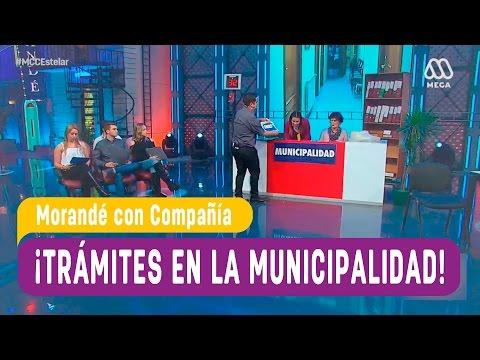 Trámites en la municipalidad - Morandé con Compañía 2016