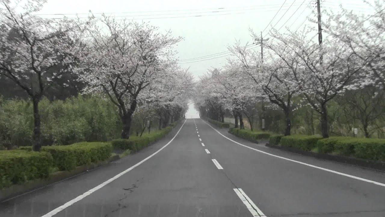 2013.3.27 茨城県道328号 守谷市 ...