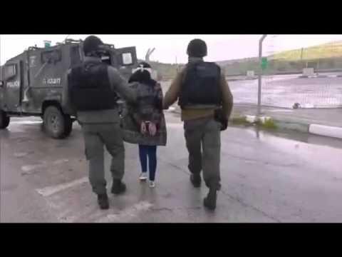 נסיון פיגוע בצומת תפוח. ערבייה צעירה נעצרה. צילום: דוברות המשטרה