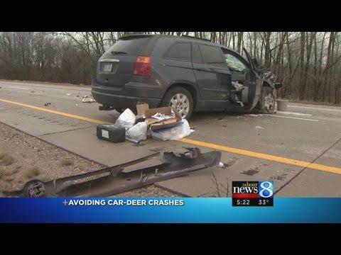 Avoiding car-deer crashes