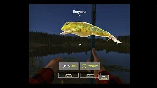 Русская рыбалка 4 оз.Комариное где ловить лягушка ? как ловить лягушку ?