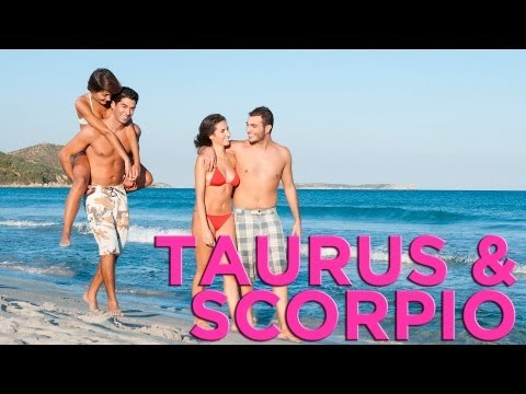 Are Taurus & Scorpio Compatible? | Zodiac Love Guide