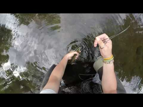 Fly Fishing Trout New Jersey