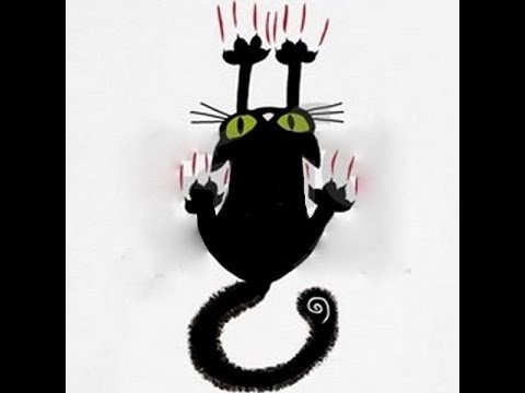 Кот неудачник картинка