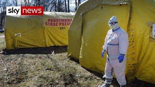 COVID-19 'much, much worse than Ebola'