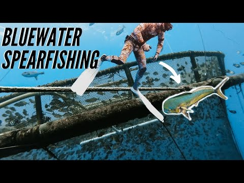 Bluewater Spearfishing On World's LARGEST FAD {Catch & Cook}