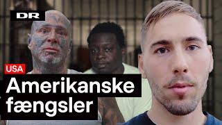 Hvorfor vil USA efterligne Danmark?