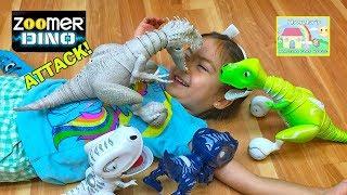 Cool Jurassic World Indominus Rex, Zoomer Boomer & Chomplingz! Interactive Pet Toys