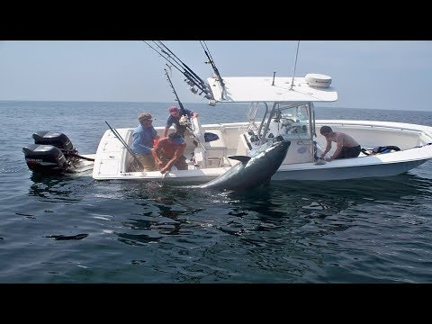 Amazing Big Tuna Fishing Skill On The Sea , Extreme Saltwater Fishing