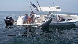 Amazing Big Tuna Fishing Skill On The Sea , Extreme Saltwater Fishing