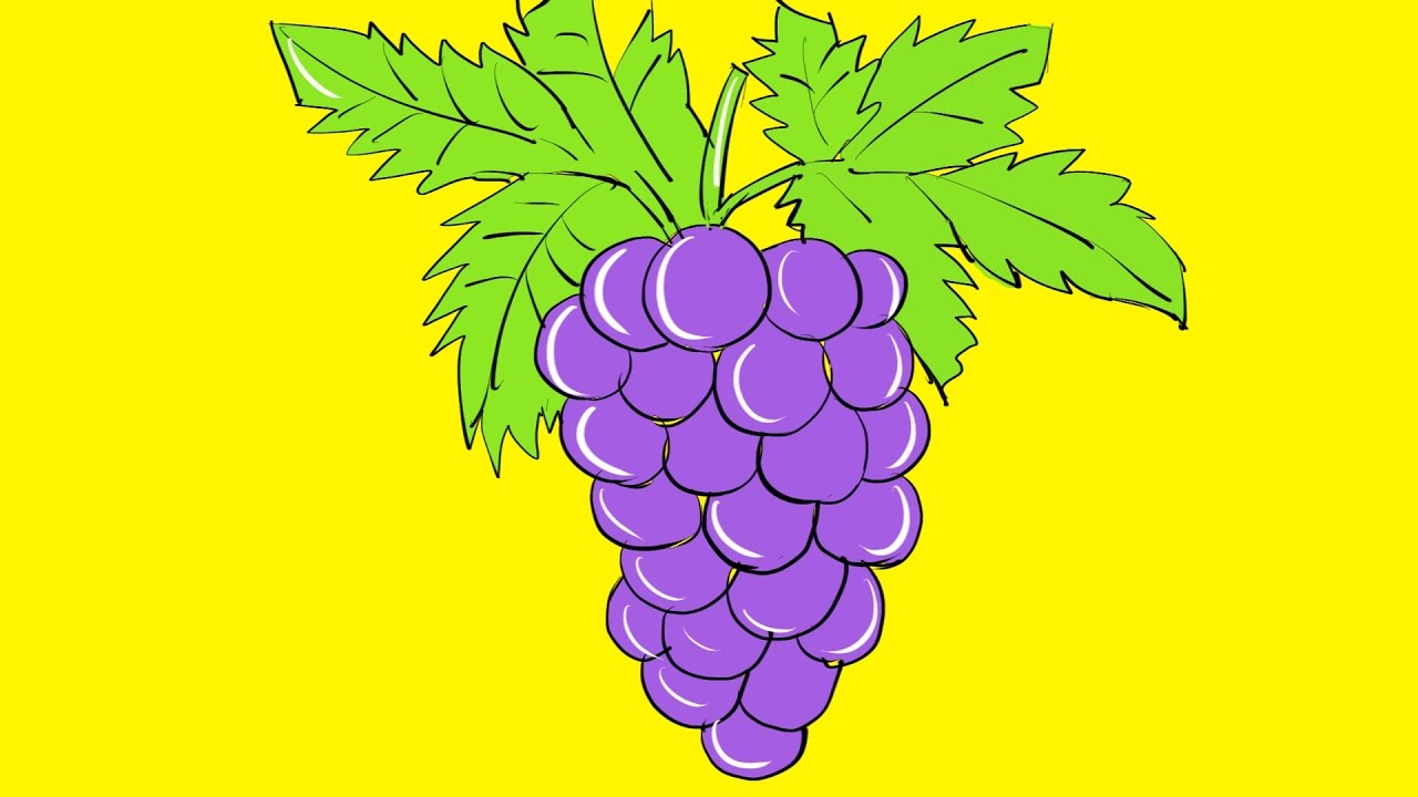 how to draw grapes coloring pages for kids drawing and