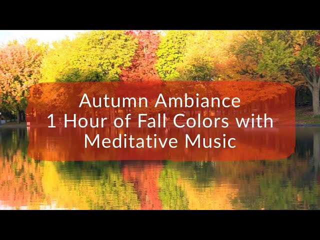 Autumn Ambiance - 1 Hour of Fall Colors with Meditative Music