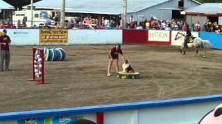 Halifax Co Exhibtion Horse Dog Relay Team #7 - Cassandra And Player