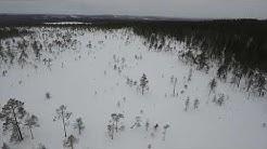 Rovaniemi - tontit Lapista edullisesti. klikkaa tästä 0456684110 0442621562 www.nousukiito.net
