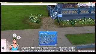 Осваиваемся в новом мире! [Sims 4 #1] Прохождение