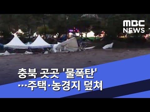 충북 곳곳 '물폭탄'…주택·농경지 덮쳐 (2018.08.31/뉴스투데이/MBC)