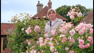 Gardening at home with Sarah | The Rose Garden in June