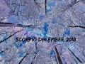 Scorpio December 2018 ~ Changing Partners