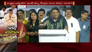 Comedian Jaya Prakash Reddy Speech @ Chandrababu Dharma Porata Deeksha    AP Special Status    NTV