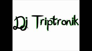 Britney Spears-Big Fat Bass [DJ Triptronik Remix]
