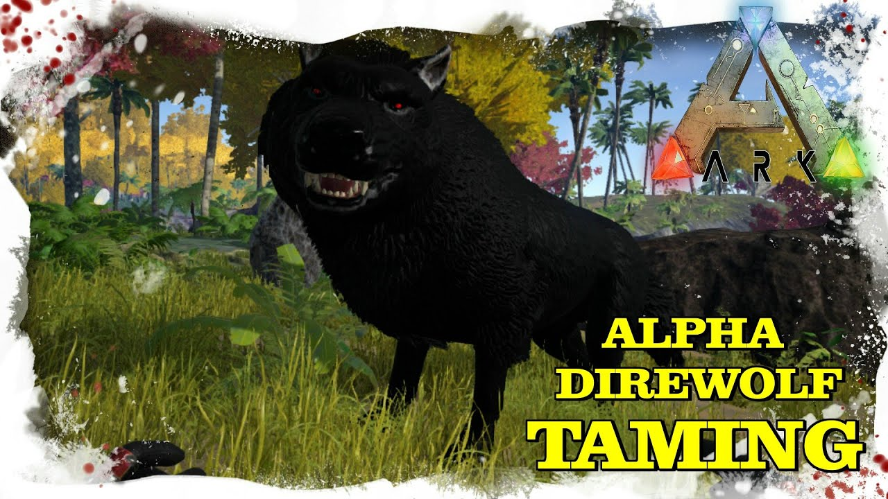 Alpha. How to tame a wolf 14