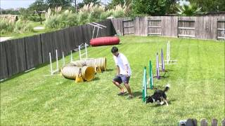 Using A Double Rear Cross Instead Of A Serpentine In Dog Agility