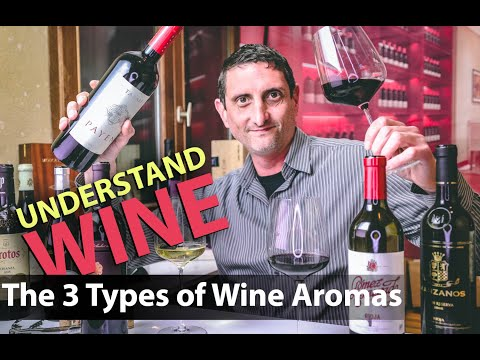 wine article Wine Bouquet Vs Aroma  What Makes The Taste Of Wine