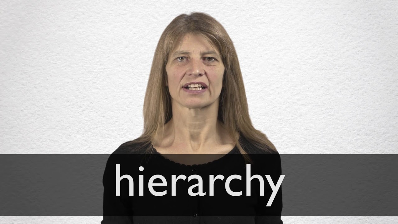 "Hindi Translation of ""hierarchy"" 
