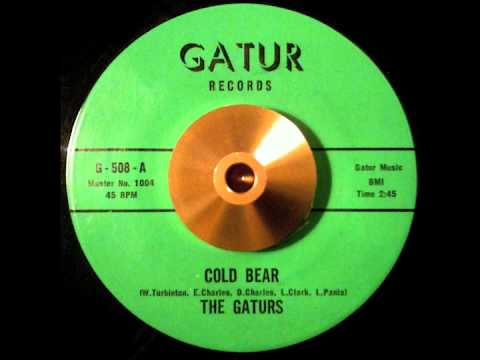 The Gaturs Cold Bear