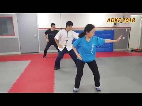 Taichi - Baiji quan Sanda training / ??? ??? ?? - ADKF [180908]