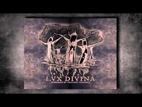 Lux Divina - Fagus Sylvatica