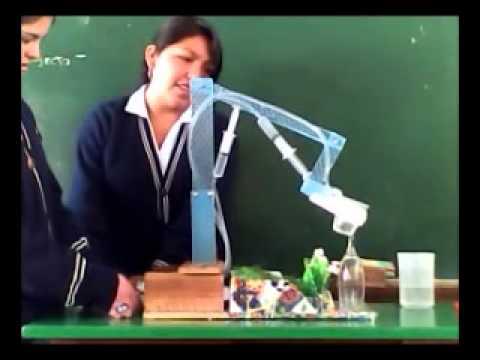 Experimentos de fisica 4 riego hidraulico youtube for Aspersores para riego de jardin