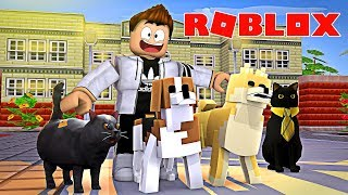 💰 FREE MONEY BY HOUSE IN ROBLOX (Pet Simulator)