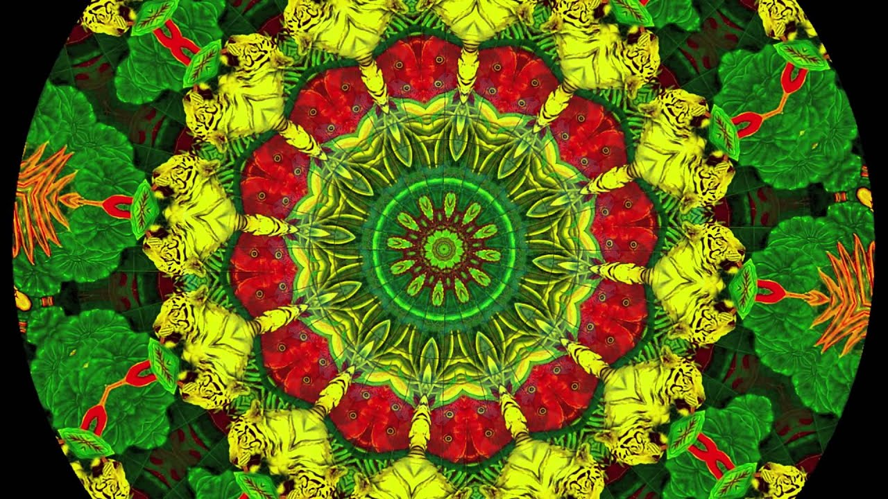 Optical Illusion Wallpaper Hd Hypnotic Music Visual Mind Excursion 2 Psychedelic