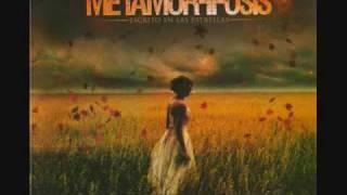 Metamorfosis-Escrito en las estrellas