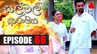 සල් මල් ආරාමය | Sal Mal Aramaya | Episode 66 | Sirasa TV Thumbnail