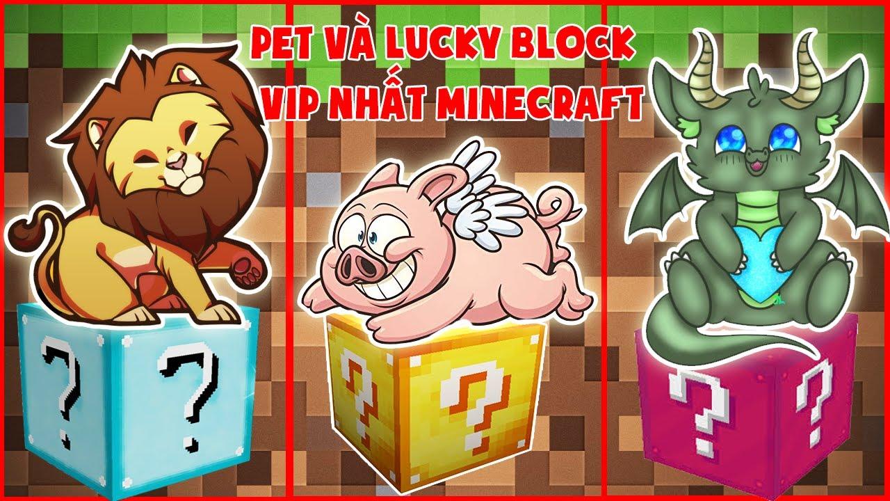 Pet Và Lucky Block Vip Nhất Minecraft ?? Thử Thách Noob