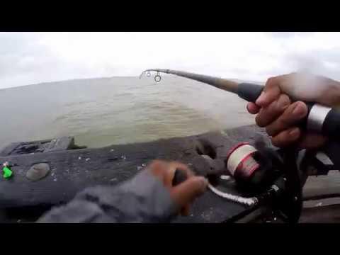 Fishing At : Beachwood Park, Downs Park, Matapeake Pier & Romancoke Pier