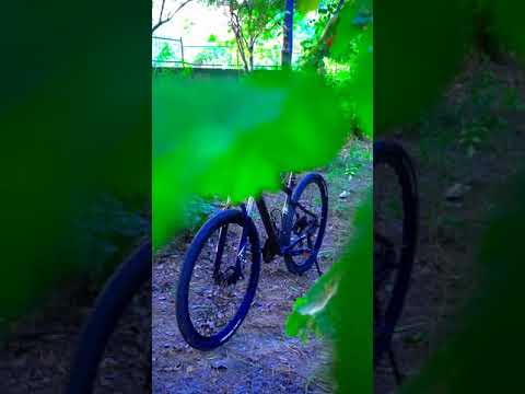1 Video, 5 Photo's 🔥 #shorts #shortvideo #cycle #bicycle #mtb #sunpeed #reel thumbnail