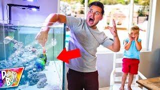 Video NEW BABY SHARK FISH BITES ME UNDERWATER!! download MP3, 3GP, MP4, WEBM, AVI, FLV Juni 2018