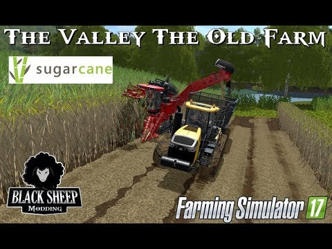 FS17 The Valley The Old Farm Test SugarCane