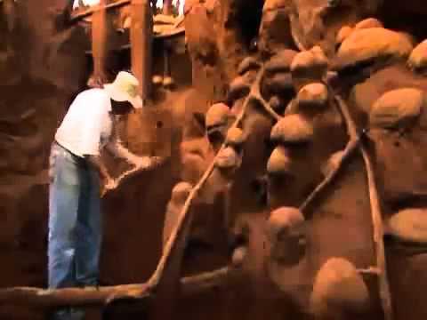 Муравейник залили бетоном бункер под бетонную смесь